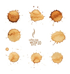 5 coffee stain watercolor 01 vector