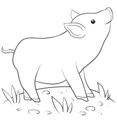 A children coloring bookpage a cartoon pig image vector