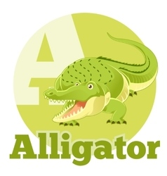 ABC Cartoon Alligator vector image