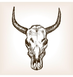 Cow skull hand drawn sketch style vector