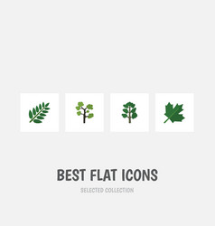 flat icon bio set of forest acacia leaf oaken vector image