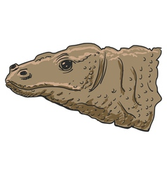 Komodo dragon vector image