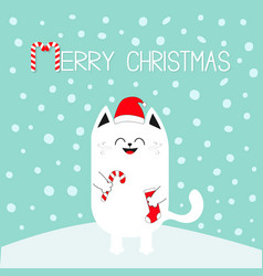 Merry christmas white cat holding candy cane sock vector