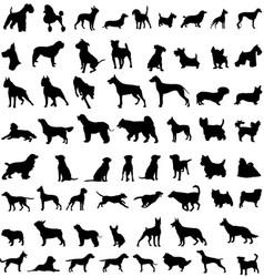 Dog sillohuettes vector
