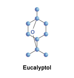 eucalyptol cyclic ether and a monoterpenoid vector image