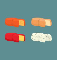 hard cheese icons closeup set vector image