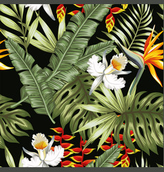 jungle flowers and leaves black background vector image