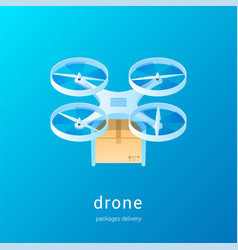 quadcopter with package concept01 vector image