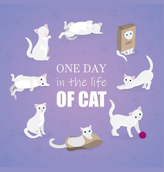 set of cartoon images of cute different cat vector image