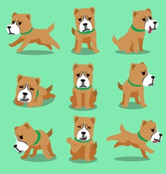 Cartoon character alabai dog poses vector image
