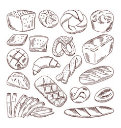 Different types of fresh bread hand drawn vector