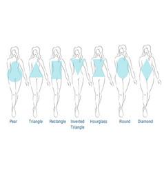 Female body types vector