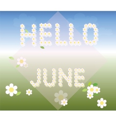 Hello June background with chamomiles vector