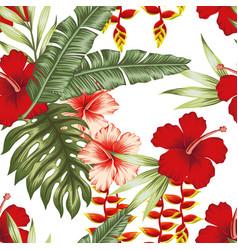jungle plants white background vector image