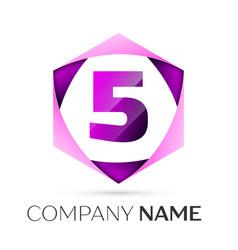Number five symbol in colorful hexagonal vector