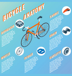 bicycle anatomy concept infographic set of vector image