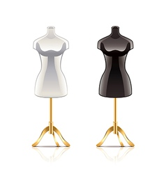 mannequin isolated vector image