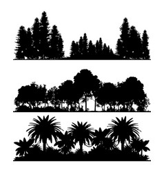 silhouettes forest vector image