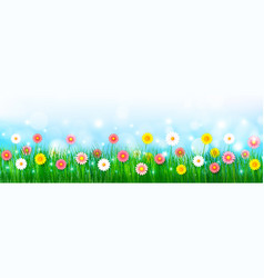 Spring background 007 vector