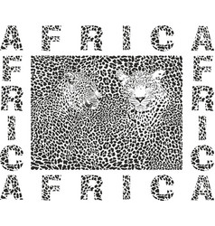 Background leopard and text africa vector