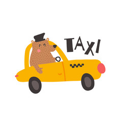 bear taxi vector image