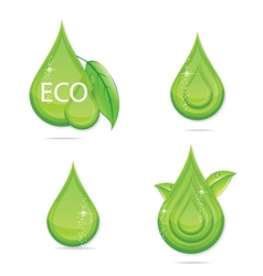 elegance green drops water eco sign vector image
