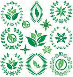 Laurel wreath and leaf set vector
