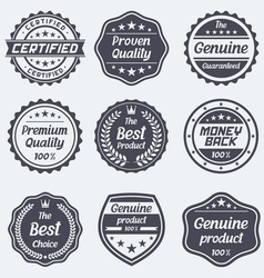 set retro badges and labels vector image