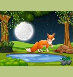 a fox looking for prey at night vector image