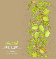 almond background vector image