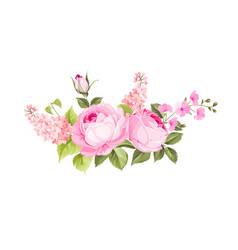 blooming spring flowers vector image
