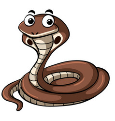 brown cobra on white background vector image