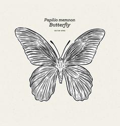 Butterfly species papilio memnon memnon vector