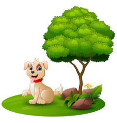 Cartoon dog sitting under a tree on a white backgr vector