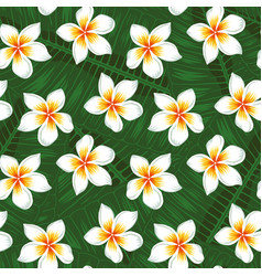 Many plumeria and leaves background seamless vector