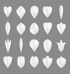 paper flowers petal and leaves set 3d vector image