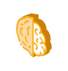Walnut nut isometric icon vector