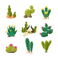 Cactus and Skull Icons Set vector image vector image