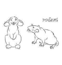 rabbit rat vector image vector image