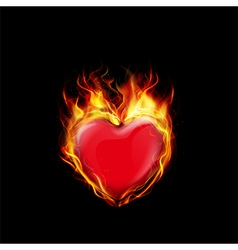 Fire burning a heart on black background vector