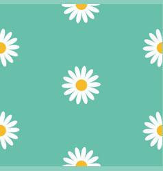 White daisy chamomile flower icon cute camomile vector