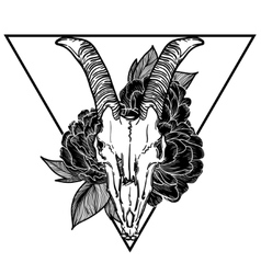 goat skull occult symbol vector image vector image
