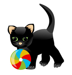 black kitten playing with colorful ball little vector image