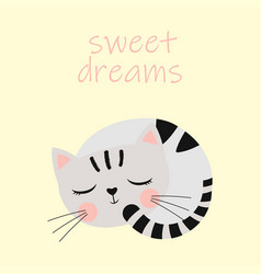 cute sleeping cat vector image