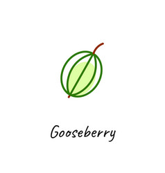 Gooseberry icon outline vector
