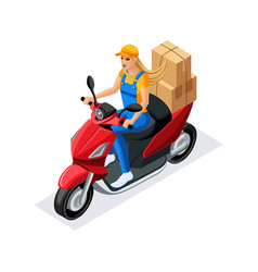 Isometric delivery of the order by the delivery se vector