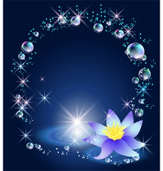 Magic lily stars and bubbles vector image