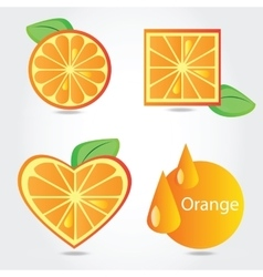 Shapes of orange fruit vector