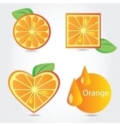 Shapes orange fruit vector