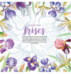greeting card with iris flowers vector image vector image